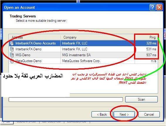 برنامج الميتا تريد 1700_1295012446.png