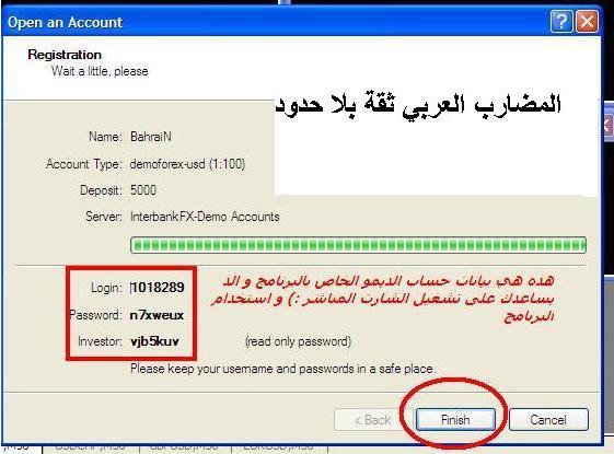 برنامج الميتا تريد 1700_1295012525.png