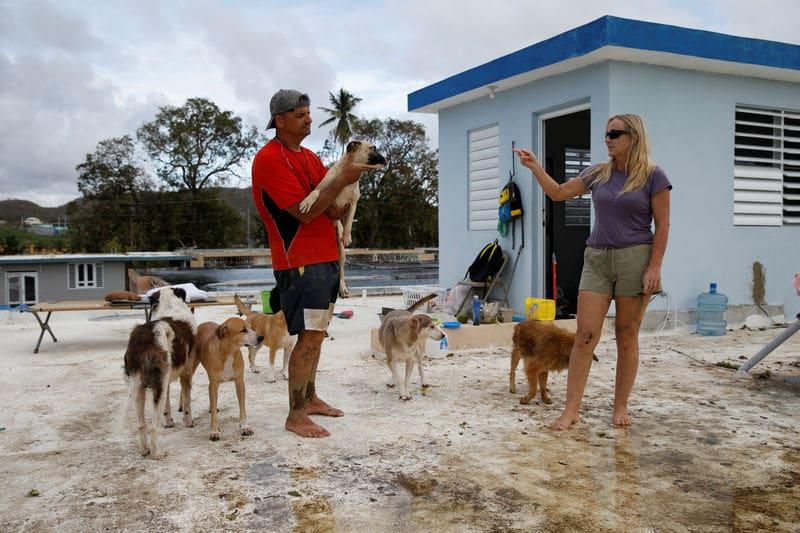 رجل وزوجته يتحديان الإعصار ماريا لإنقاذ سبعة كلاب وثماني قطط