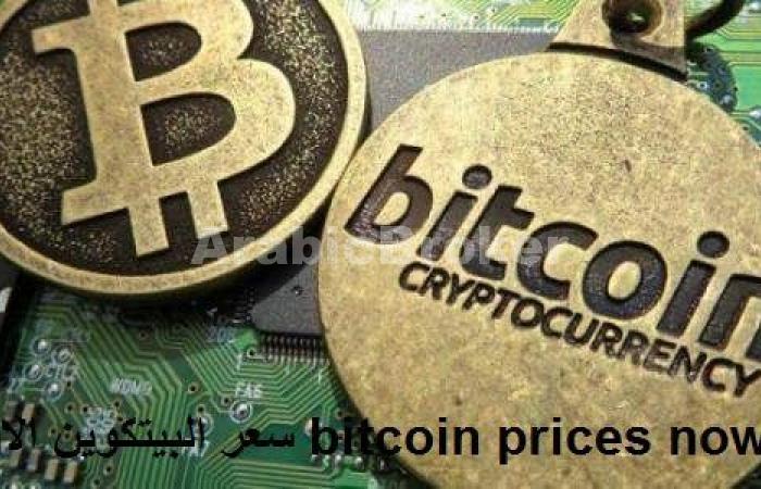 تراجع العملة الرقمية البيتكوين بنحو 7% لما دون حاجز 15,000$